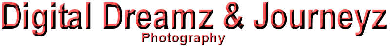 Digital Dreamz & Journeyz Logo